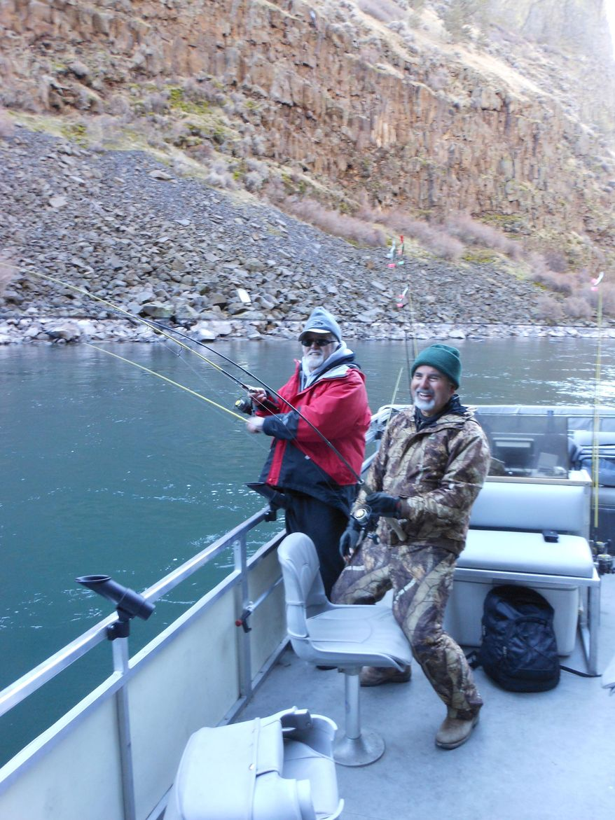 In this Jan. 15, 2016, photo, John Garrison, left, and Rolando Mendez both reel in bull trout while fishing on the Crooked River arm of Lake Billy Chinook in Oregon. (Mark Morical/The Bulletin via AP) MANDATORY CREDIT