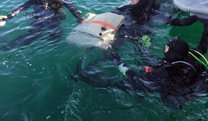 In this Sunday, Feb. 7, 2016 photo provided by the Los Angeles County Sheriff's Department, divers with the department's Special Enforcement Bureau surface with wreckage from one of two small planes that collided in midair and crashed into the ocean Friday off the coast near Los Angeles. Two bodies were also recovered. Divers made the discovery about 100 feet below the surface in an area about two miles off Los Angeles Harbor, authorities said.(Los Angeles County Sheriff's Department via AP)
