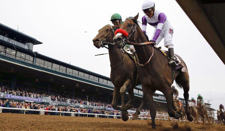 FILE - In this Oct. 31, 2015, file photo, Nyquist, front right, with Mario Gutierrez up, finishes ahead of Swipe, left, with Victor Espinoza up, to win the Breeders' Cup Juvenile horse race at Keeneland race track in Lexington, Ky. Nyquist is gearing up for his 3-year-old debut in the seven-furlong San Vicente at Santa Anita on Saturday, Feb. 13, 2016. (AP Photo/Brynn Anderson, File)