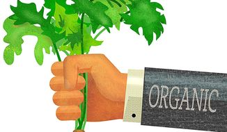 Organic Carrot Illustration by Greg Groesch/The Washington Times