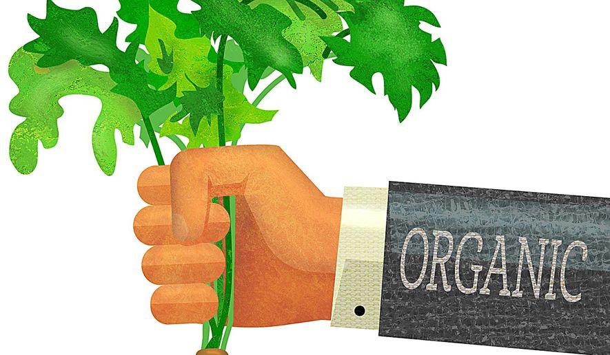 Organic Carrot Illustration by Greg Groesch/The Washington Times