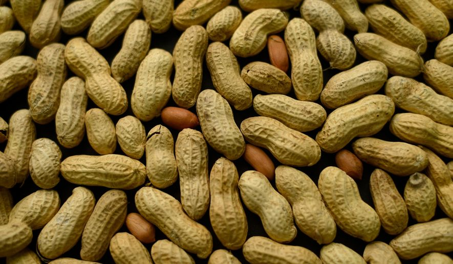 This Feb. 20, 2015, file photo, photo shows an arrangement of peanuts in New York. (AP Photo/Patrick Sison, File)