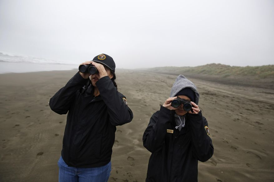 Veronica Hurd, GGNRA wildlife monitoring intern and Brittany Livingston, GGNRA wildlife monitoring intern, look through binoculars for snowy plovers on Ocean Beach on Friday, March 4, 2016 in San Francisco, Calif. The average count at the bird's overwintering ground in Crissy Field Wildlife Protection Area and Ocean Beach is usually between 20 and 30 birds but this January as many as 104 plovers were counted in a single day. (Lea Suzuki/San Francisco Chronicle via AP)  MANDATORY CREDIT PHOTOG & CHRONICLE; MAGS OUT; NO SALES