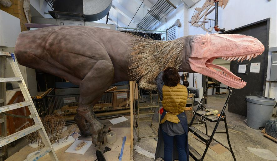 "In this October 30, 2015 photo a specialist at the American Museum of Natural History in New York works on a model of a Yutyrannus for the Museum's upcoming exhibition, ""Dinosaurs Among Us."" The exhibition, exploring the connection between dinosaurs and today's birds, will open on March 21, 2016. (Roderick Mickens/American Museum of Natural History via AP)"