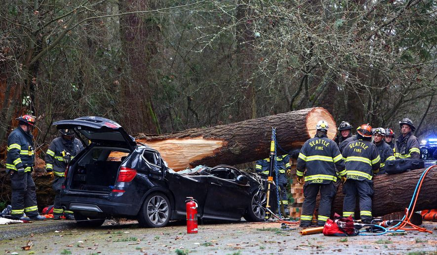 Seattle Fire and emergency crews work to extract the body of a man who died when a tree fell on his car at Seward Park, Sunday, March 13, 2016. The Seattle Fire Department reported that a bystander helped a toddler out of the back seat, she was then transported to Harborview Medical Center with minor injuries.   (Genna Martin/seattlepi.com via AP)