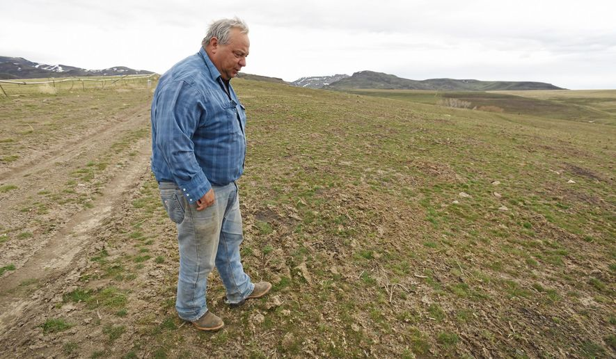 In this photo taken Thursday, March 10, 2016, rancher Ed Wilsey looks over an area of his rangeland near Marsing, Idaho. The area was recently reseeded after most of his ranching land was burned in the 280,000-acre Soda Fire that started last August. (Greg Kreller/The Idaho Press-Tribune via AP)  MANDATORY CREDIT