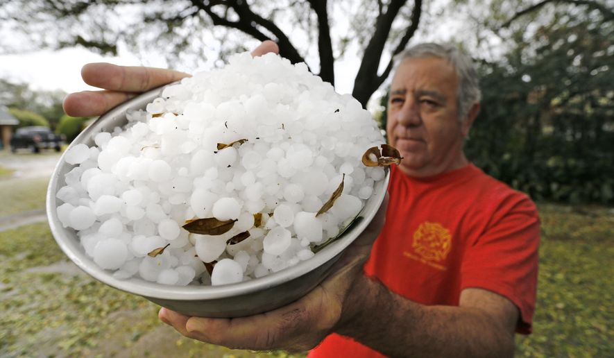 L.C. Martin holds a bowl-full of hail stones from his neighborhood south of TCU, Thursday, March 17, 2016 in Fort Worth, Texas.  Hail the size of golf balls coated parts of North Texas, broke windows, damaged police vehicles and killed exotic birds at the Fort Worth Zoo.   (Paul Moseley/Star-Telegram via AP)  MAGS OUT; (FORT WORTH WEEKLY, 360 WEST); INTERNET OUT; MANDATORY CREDIT