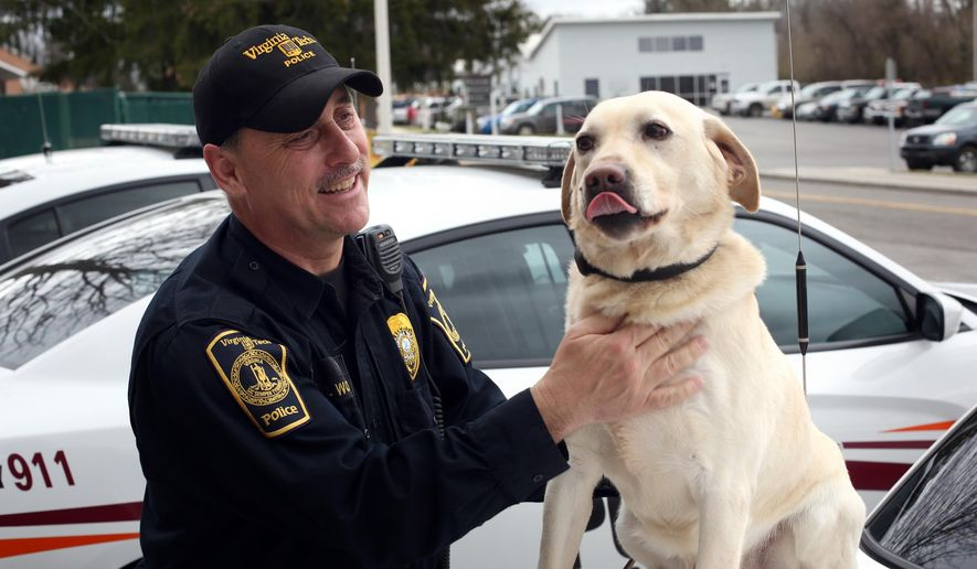 In a Friday, March 11, 2016, file photo, Virginia Tech police officer Larry Wooddell and his canine partner Boomerl pose in front of the department headquarters on the Virginia Tech campus in Blacksburg, Va. Wooddell has collected more than a few stories over the past eight years, as he's carried the leash for one of the region's most recognizable bomb-sniffing dogs around. The duo has clocked in for every shift together for nearly a decade, and now they're planning to retire together at the beginning of April. (Matt Gentry/The Roanoke Times via AP)