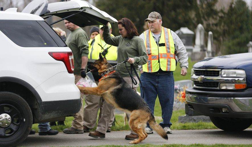 In a Wednesday, March 23, 2016 photo, a search and rescue dog is prepared to search the area near a house where a baby disappeared in Spencer, Ind.  Shaylyn Ammerman was reported missing from her crib by her grandmother Wednesday morning. The search continued Thursday. (Jeremy Hogan/Bloomington Herald-Times via AP) (Jeremy Hogan/(/The Herald-Times via AP) MANDATORY CREDIT