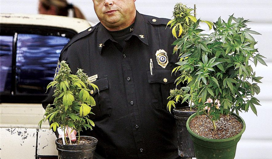 FILE - In this Oct. 22, 2013 file photo, Alton, Ill., Police Chief Jake Simmons helps carry marijuana plants to an evidence vehicle from a house in Alton, Ill. Illinois lawmakers are again trying to decriminalize the possession of small amounts of marijuana but face strong opposition from law enforcement and anti-pot advocates. (John Badman/The Telegraph via AP, File) BELLEVILLE NEWS-DEMOCRAT OUT; ST. LOUIS POST-DISPATCH OUT BELLEVILLE NEWS-DEMOCRAT OUT; ST. LOUIS POST-DISPATCH OUT; MANDATORY CREDIT