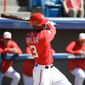 Washington Nationals' Michael Taylor swings at a pitch during an intrasquad baseball game at a spring training workout, Sunday, Feb. 28, 2016, in Viera, Fla. (AP Photo/John Raoux)