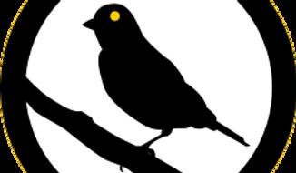 canarywatch.org