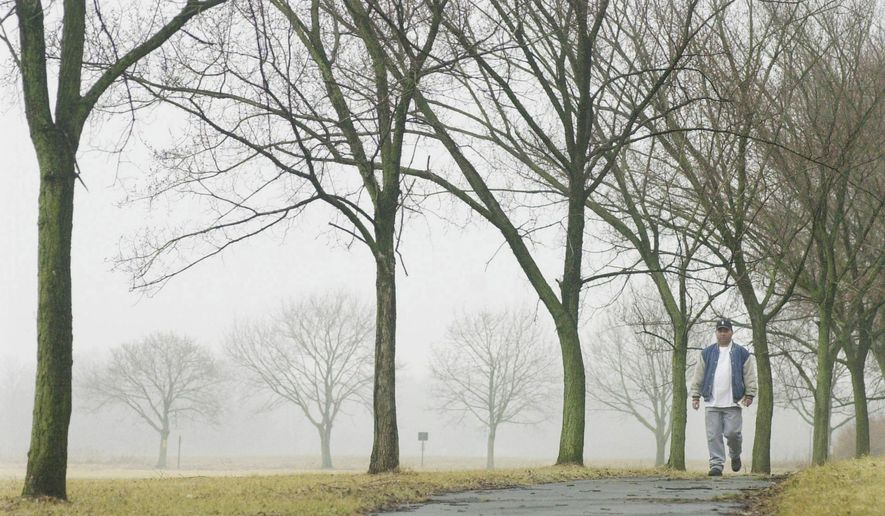 FILE - In this March 5, 2004 file photo, a man walks along a path lined with elm trees in Princeton, N.J.. The recent spring-like weather has a big downside for allergy sufferers: Tree buds, the first being elms and maples, have begun releasing pollen ahead of the normal time. A report issued Monday, April 4, 2016, by the Obama Administration listed how global warming will make the air dirtier, water more contaminated and food more tainted. It warned of diseases, such as those spread by ticks and mosquitoes, longer allergy seasons, and thousands of heat wave deaths.  (AP Photo/Daniel Hulshizer, File)