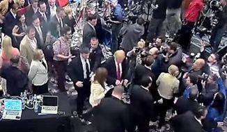 """Former Breitbart News reporter Michelle Fields criticized her """"friend"""" Fox News' Sean Hannity for not challenging Donald Trump """"on his lies"""" that she grabbed him at a Florida press conference last month."""