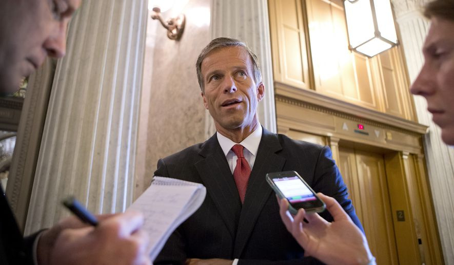 Sen. John Thune, R-S.D., chair of the Senate Republican Caucus, speaks with reporters at the Capitol in Washington, Wednesday, July 24, 2013. (AP Photo/J. Scott Applewhite) ** FILE **