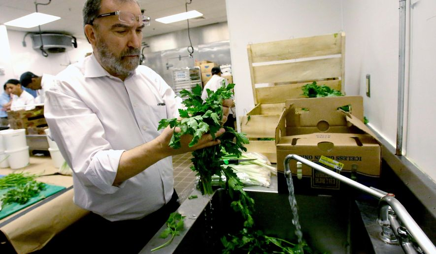 In this April 18, 2016 photo, Rabbi Raphael Berdugo checks parsley for insects as part of the preparation for the Passover holiday at the Waldorf Astoria resort at Disney World in Orlando, Fla. More than 1,000 Jews are expected to stay at the resort and take part in the eight day celebration. (AP Photo/John Raoux)