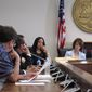 South Carolina Rep. Mia McLeod, center, listens to lawmakers discuss her bill requiring a 24-hour waiting period for men to get a Viagra prescription on Wednesday, April 20, 2016, in Columbia, South Carolina. The Columbia Democrat said her bill was a tongue-in-cheek response to all of the regulations South Carolina's male-dominated Legislature places on abortions. (AP Photo/Jeffrey Collins)