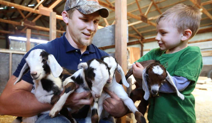 Willis McCall and his son Luke hold 8-day-old quadruplet goats born on their ranch east of Billings, Mont. on April 20, 2016. The birth of the kids last week is the first time the family has owned a goat that had a litter. (Casey Page/The Billings Gazette via AP) MANDATORY CREDIT