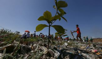 "Environmentalists conduct a coastal clean up to mark World Earth Day Friday, April 22, 2016 at a bird sanctuary known as ""Freedom Island"" in suburban Las Pinas city, south of Manila, Philippines. Earth Day is celebrated in over 190 countries worldwide with this year's theme of encouraging people to plant more trees to save Mother Earth.(AP Photo/Bullit Marquez)"