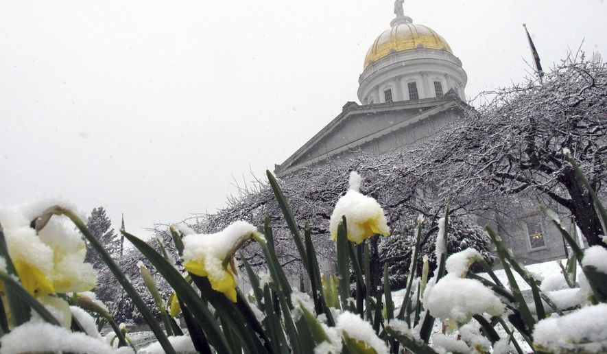 Snow from a late-season storm covers flowers on the grounds of the Vermont Statehouse Tuesday, April 26, 2016, in Montpelier. Vt. Forecasters said it's late for snow but it's not unprecedented to have snow in late April in northern New England. (AP Photo/Wilson Ring)