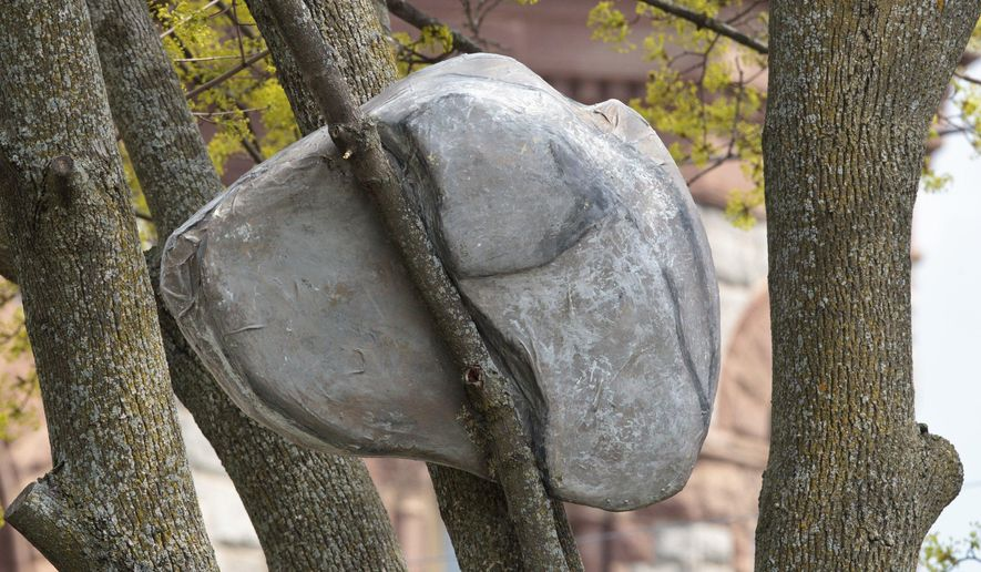 "This photo taken Thursday, May 5, 2016, shows part of the installation, titled ""IMPOSSIBLE,"" created by Andy Moerlein, that features specifically placed rock sculptures in various trees around at Hackley Park in Muskegon, Mich. The installation was installed on April 23, 2016 and will be in the trees until April of 2017. (Joel Bissell/Muskegon Chronicle via AP) ALL LOCAL TELEVISION OUT; LOCAL TELEVISION INTERNET OUT; MANDATORY CREDIT"