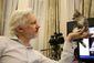 Britain Assange Kitten.JPEG-010ad.jpg