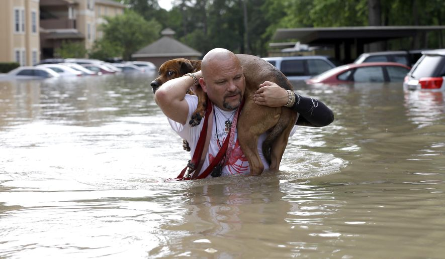 "FILE - In the April 19, 2016 file photo, Louis Marquez carries his dog Dallas through floodwaters after rescuing the dog from his flooded apartment in Houston. Houston's worsening floods are being blamed on a ""growth-at-any-cost' political creed that benefits developers but has widened floodways and digs ever more into taxpayers' pockets. (AP Photo/David J. Phillip, File)"