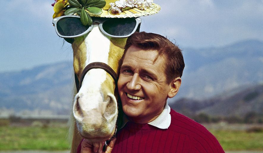 In this March 22, 1962, file photo, Mister Ed, equine star of the television series of the same name, poses with his TV co-star Alan Young on a beach in Malibu, Calif. Young, who played straight man to the talking horse in the 1960s sitcom, has died. He was 96. (AP Photo, File)