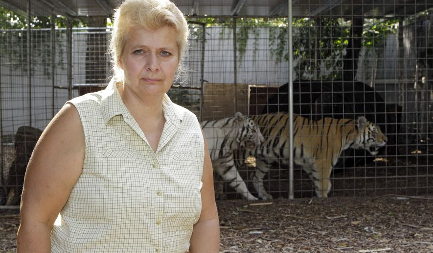 FILE - In this Aug. 25, 2010, file photo, Cyndi Huntsman poses in front of caged tigers at her Stump Hill Farm in Massillon, Ohio. After the Ohio Department of Agriculture took five tigers and five other exotic animals from the farm on May 4, 2016, one of the seized tigers gave birth to four cubs. Two of the four cubs were found dead Friday, May 20, 2016, in a holding area at an Ohio Department of Agriculture facility in Reynoldsburg, Ohio, and the other cubs were moved to the Columbus Zoo and Aquarium in Powell, Ohio. The department says it took the animals because Huntsman hasn't met Ohio's tightened restrictions on keeping such creatures, but Huntsman argues her farm is exempt from permit requirements and the animals should be returned. (AP Photo/Mark Duncan, File)