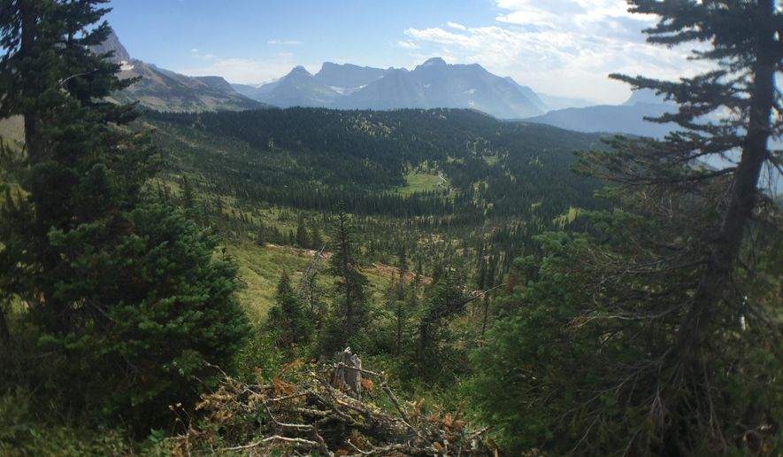 In this Aug. 14, 2015 photo, a valley vista is seen along the Highline Trail in Glacier National Park in Montana. The park, accessible by Amtrak's Empire Builder passenger train, is home to seemingly endless mountain peaks, waterfalls, valleys, wildflowers and lakes. (Jan Bryan via AP)