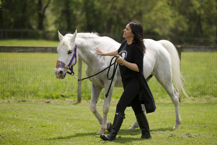 Tracey Stewart, leads Lily the horse she adopted away at the end of a news conference Wednesday, May 25, 2016, in Kennett Square, Pa. Doreen Weston, the former owner of the horse adopted by Jon Stewart and his wife Tracey that was portrayed as having been shot by paintballs over 100 times, said Wednesday the animal was used at children's finger-painting parties and was never injured by a paintball gun. Lily was found seemingly abandoned at an auction stable in New Holland, Pa., in March. Police say she was covered in paint and extremely sore to the touch.  (AP Photo/Matt Rourke)