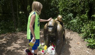 A child touches the head of a gorilla statue where flowers have been placed outside the Gorilla World exhibit at the Cincinnati Zoo & Botanical Garden, Sunday, May 29, 2016, in Cincinnati. (AP Photo/John Minchillo)