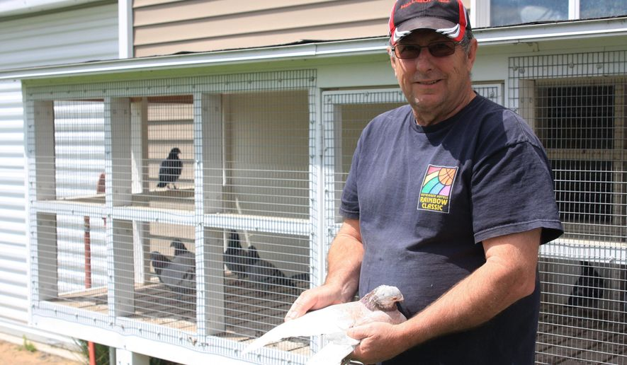 ADVANCE FOR SUNDAY, MAY 29, 2016 - In this May 18, 2016 photo, Leon Freeman poses with his homing pigeons in North Platte, Neb. Freeman enters his homing pigeons in several competitions during spring and summer. (Job Vigil /The Telegraph via AP) MANDATORY CREDIT