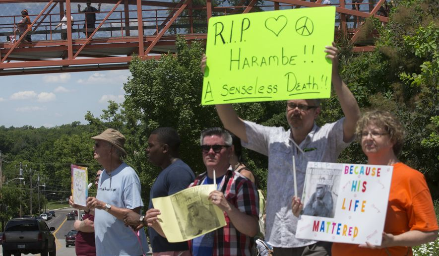 Zoo visitors look at protestors and mourners from a walk bridge Monday during a vigil for the gorilla Harambe outside the Cincinnati Zoo & Botanical Garden. Harambe was killed Saturday at the Cincinnati Zoo after a 4-year-old boy slipped into an exhibit and a special zoo response team concluded his life was in danger. (Associated Press)