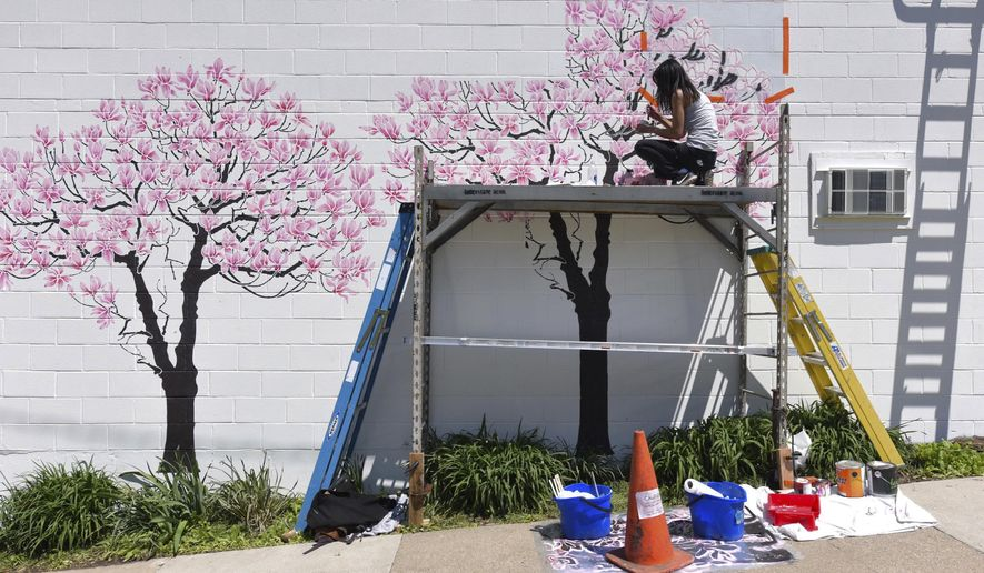 ADVANCE FOR SUNDAY, JUNE 5 - In this May 18, 2016 photo, Cate Tinsley, an artist from New York and creator of Olive Leaf Stencils, uses her stencils to make a magnolia tree mural on Jefferson Street near Main Street in Ann Arbor, Mich. (Ryan Stanton, The Ann Arbor News via AP)