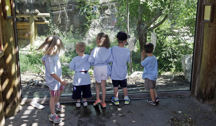 Children look in to the Amur leopard enclosure at the Utah's Hogle Zoo Tuesday, June 7, 2016, in Salt Lake City. Zoo officials say a rare Amur leopard is safe after it escaped from its enclosure and was tranquilized by staff. Hogle Zoo spokeswoman Erica Hansen says the 4-year-old female leopard was found Tuesday morning by zoo visitors after it escaped.   (AP Photo/Rick Bowmer)