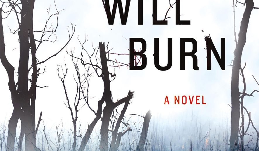 """This book cover image released by Minotaur shows, """"Burn What Will Burn,"""" by CB McKenzie. (Minotaur via AP)"""