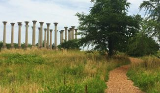 One of the most impressive collections in the National Arboretum is neither plant nor animal but mineral — 22 Corinthian pillars that originally formed part of the east portico of the U.S. Capitol Building. (Emily Kim/The Washington Times) **FILE**