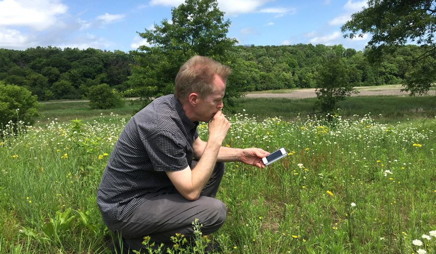 In this June 9, 2016 photo, environmental composer Steve Heitzeg uses a smartphone to record the sounds of sand hill cranes at a marsh in the Belwin Conservancy in Afton, Minn. As the summer artist-in-residence at Belwin, Heitzeg, of St. Paul, is spending three months listening to and recording sounds from nature that may be eventually be used in one of his compositions. (Mary Divine/Pioneer Press via AP)  MINNEAPOLIS STAR TRIBUNE OUT; MANDATORY CREDIT