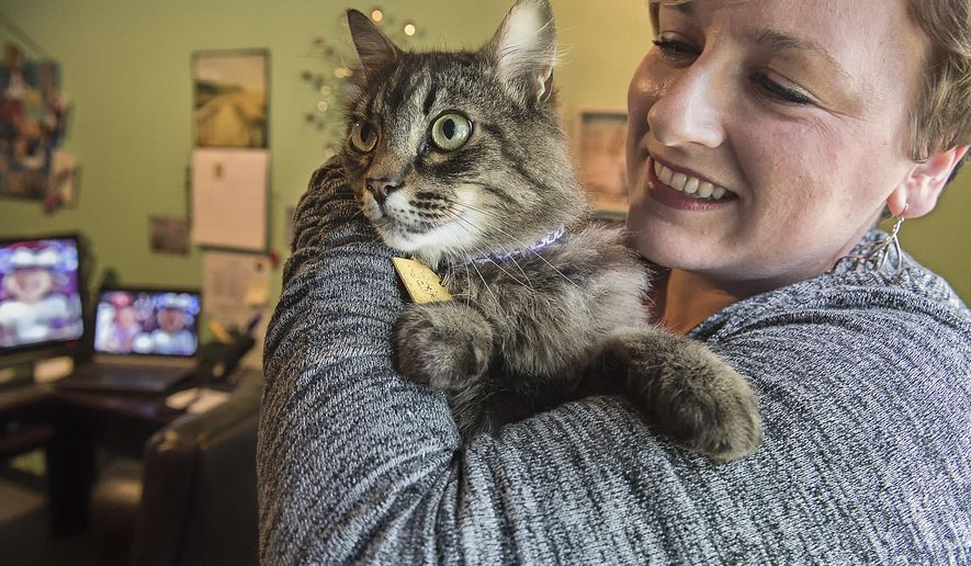 ADVANCE FOR WEEKEND EDITIONS, JUNE 25-26 - In this photo taken June 15, 2016, Bard the cat gets plenty of love from Emergency Support Shelter staff like Christi Brittain while the cat gives back attention and friendliness to the residents and their families staying at the shelter in Longview, Wash. (Bill Wagner /The Daily News via AP) MANDATORY CREDIT