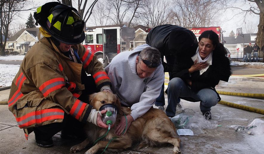 ADVANCE FOR SUNDAY, JUNE 26 - FILE - In this Dec. 9, 2010, file photo, Amira Bichara, right, gasps in relief when a golden retriever rescued from a house fire begins breathing normally, as a firefighter and resident administer oxygen in Kettering, Ohio. Under a new Ohio law taking effect Aug. 31, 2016, firefighters and EMTs can provide basic first aid to dogs and cats rescued from house fires, car accidents or other crisis situations, treatment that only licensed veterinarians could legally provide under existing law. (Larry C. Price/Dayton Daily News via AP, File)  LOCAL PRINT OUT; LOCAL TELEVISION OUT; WKEF-TV OUT; WRGT-TV OUT; WDTN-TV OUT; MANDATORY CREDIT