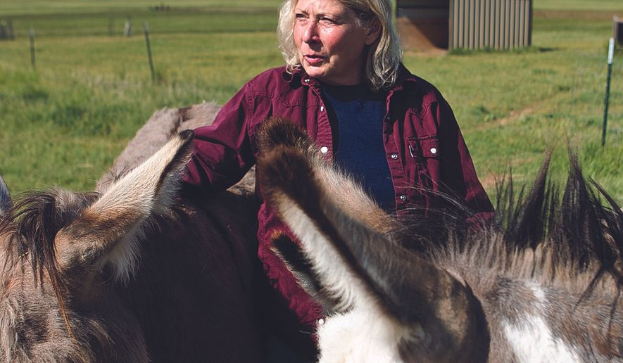 Deb Roberts stands with some of the donkeys she rescued at Home on the Range Animal Haven in Laramie, Wyo. Her nonprofit organization provides a home for old and abandoned animals. (Shannon Broderick/Laramie Boomerang via AP)