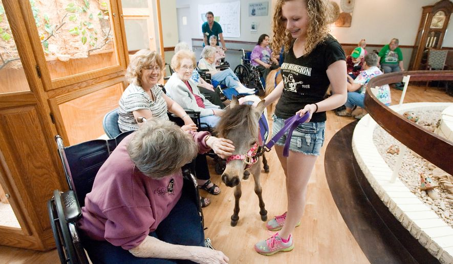 "In this June 11, 2016 photo, Sophie Zimmerman, right, of Heartland Mini Hoofs, shows ""Winnie,"" a miniature therapy horse to residents at Mattoon Rehabilitation & Healthcare Center in Mattoon, Ill. Heartland Mini Hoofs is a mini equine therapy visitation program. Diane German of the center's activities department said like with other therapy animals, the horses do a good job of evoking memories from clients' pasts as well as getting them active in some way.(Kevin Kilhoffer/Journal Gazette via AP) MANDATORY CREDIT"