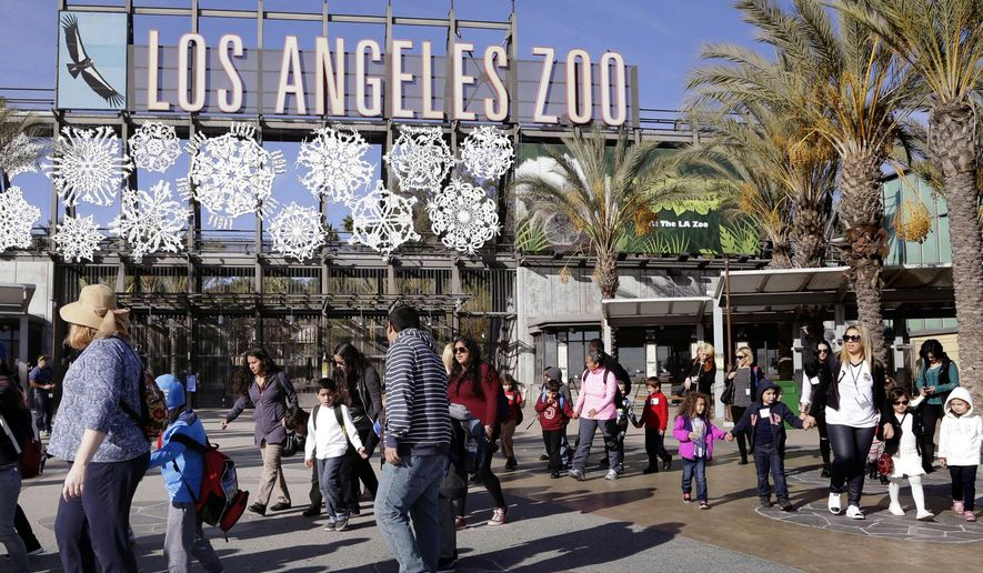 FILE - In this Jan. 21, 2016, file photo, school children arrive at Los Angeles Zoo, in Los Angeles. Comedian Jeff Wysaki said on social media in June 2016 that he posted fake animal facts around the zoo. (AP Photo/Nick Ut, File)