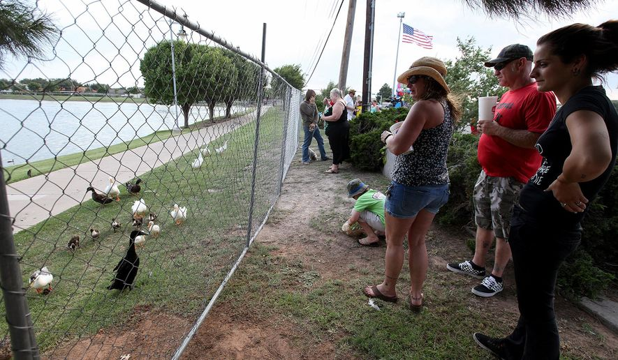 A flock of ducks and ducklings migrate towards the fence separating them from the street during a protest on Wednesday, July 6, 2016, along 42nd Street in front of Memorial Gardens Park in Odessa, Texas. People were protesting the future euthanization of 90 fowl from the park. (Edyta Blaszczyk/Odessa American via AP)