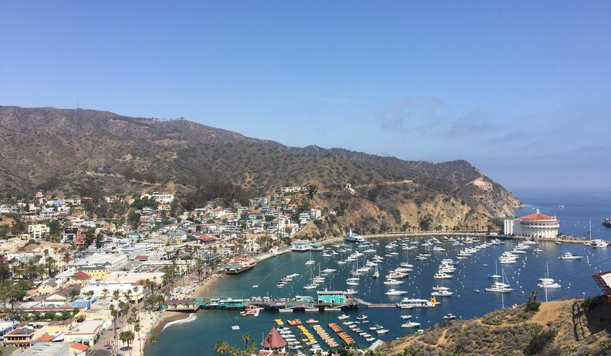 This June 22, 2016 photo shows a view of boats moored near the short of Catalina Island off the coast of California. The scenic island is reachable by ferry from Long Beach. (AP Photo/Beth J. Harpaz)