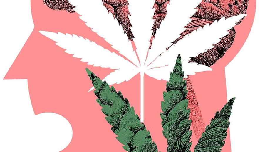 Illustration on the actual dangers of marijuana by Alexander Hunter/The Washington Times