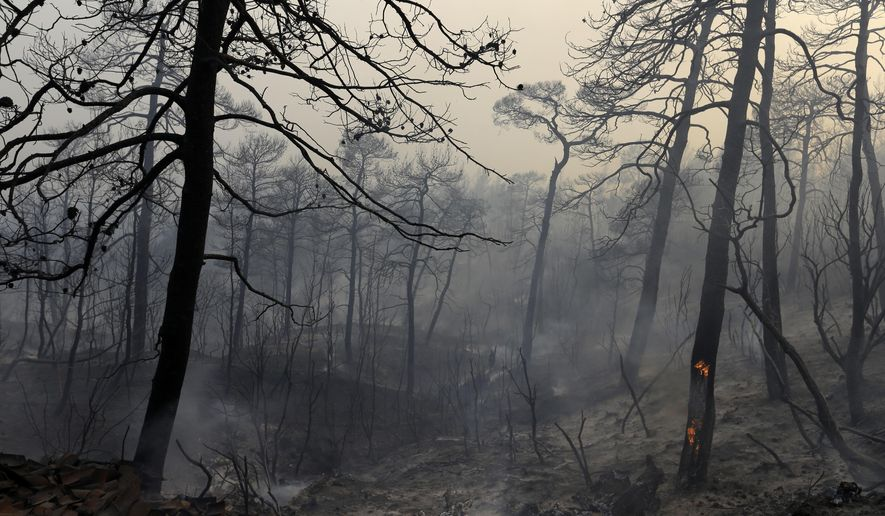 Fire burns a tree at the village of Limni on the island of Evia, about 160 kilometers (100 miles) north of Athens, Monday, Aug. 1, 2016. Nearly 200 firemen, assisted by water-dropping aircraft, fire engines and volunteers, are fighting a large forest fire that has raged through the Greek island of Evia for the past three days. (AP Photo/Thanassis Stavrakis)