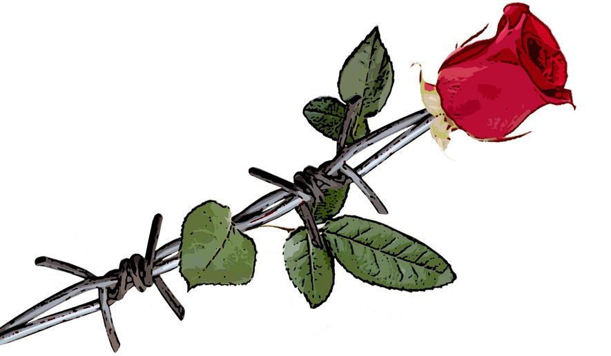 Barbede Rose Illustration by Greg Groesch/The Washington Times