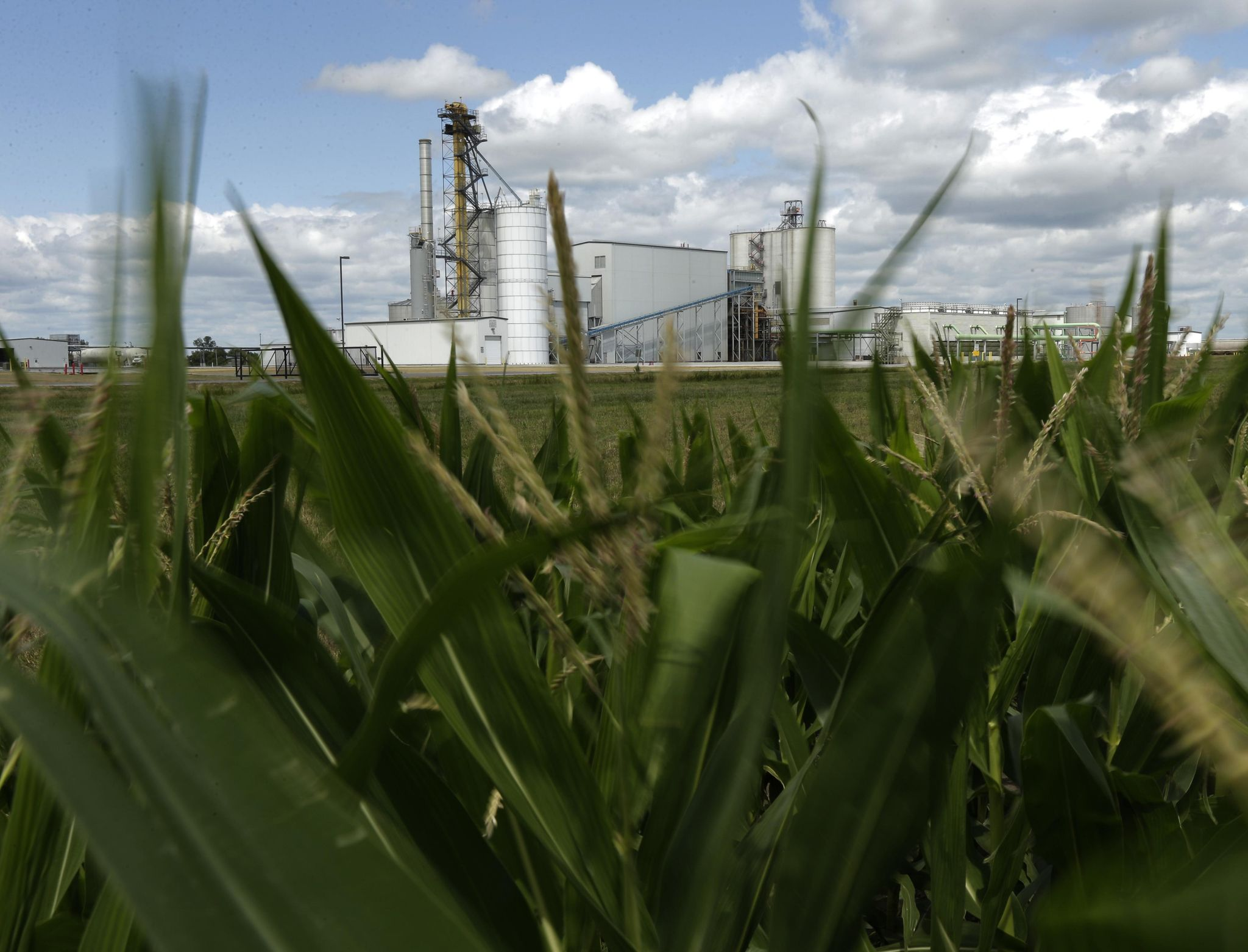 Ethanol bill defeated in Senate